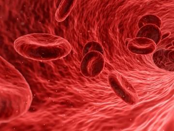 자가면역질환 해결의 첫걸음, 면역에 대한 이해