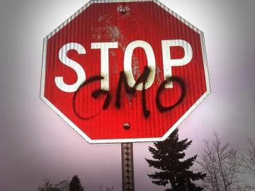 GMO가 생명을 위협한다