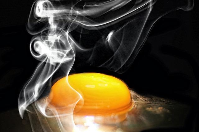 egg-601508_640