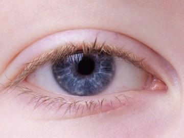 망막증 예방, 혈관이 풍부한 망막 관리는 콜레스테롤 관리로
